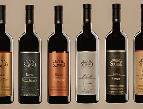 Collectors 101- Paolo Scavino Wines