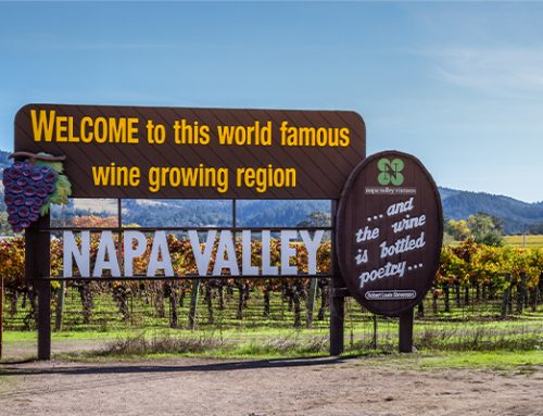 24 hours of Fire Season In Napa With Sommelier Jodi Bronchtein