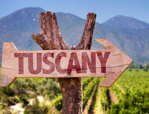 Vintage Report- 2017 Tuscany