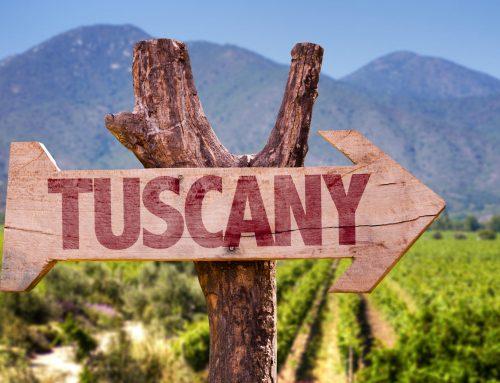 Vintage Report- 2017 Tuscany